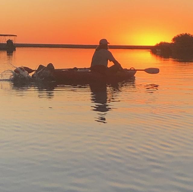 kayakingyardie creek